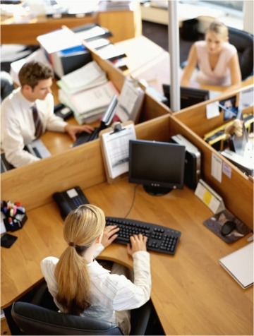 office_workers_360_476